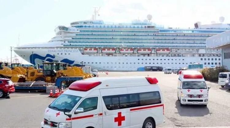 У троих граждан РФ с лайнера Diamond Princess подтвержден коронавирус